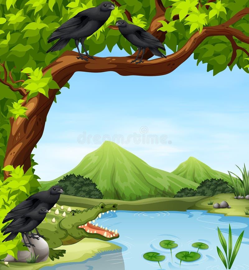 乌鸦和鳄鱼由河 皇族释放例证