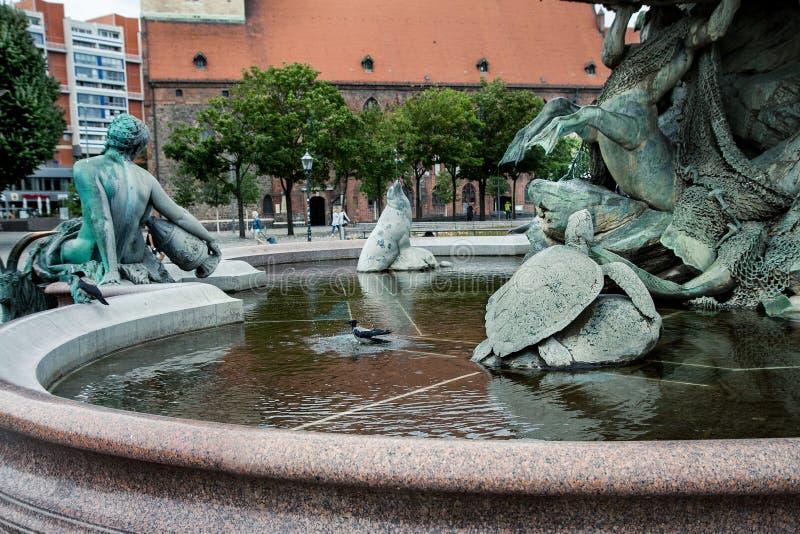 乌鸦在喷泉沐浴 海王星喷泉Neptunbrunnen berlitz 德国 免版税库存图片