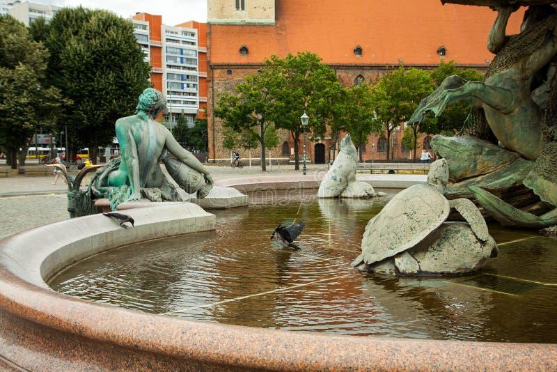 乌鸦在喷泉沐浴 海王星喷泉Neptunbrunnen berlitz 德国 图库摄影
