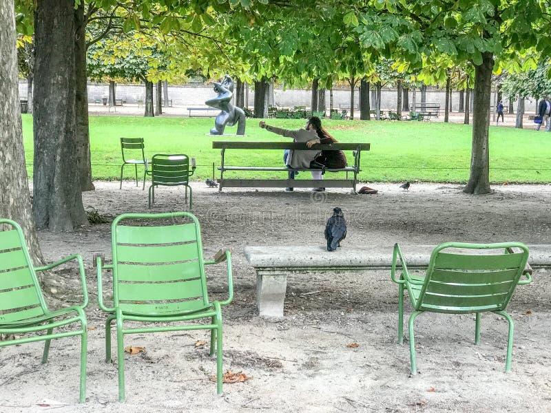乌鸦在Tuileries庭院里观看夫妇采取selfie,巴黎 图库摄影