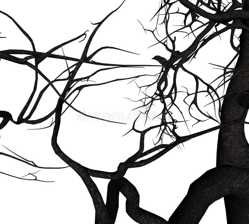 乌鸦树 向量例证