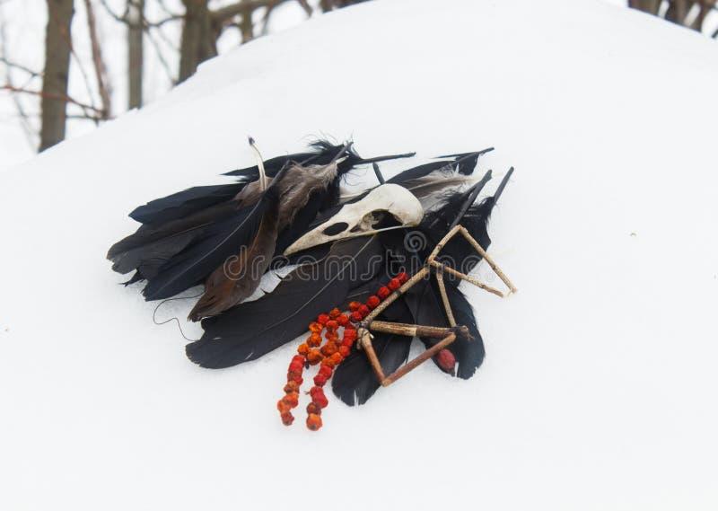 乌鸦羽毛、鸟头骨和花揪小珠在雪 库存照片