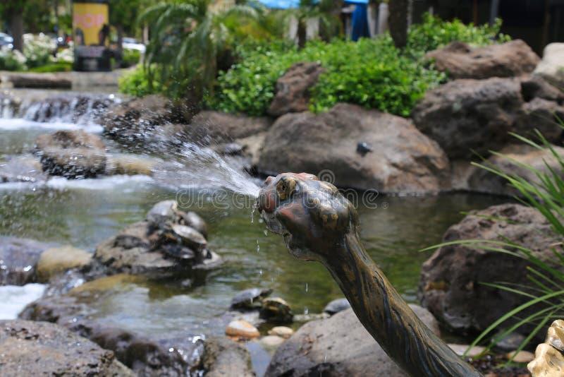 乌龟喷泉池塘 库存图片