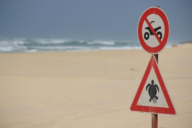 乌龟海滩没有方形字体 免版税库存照片