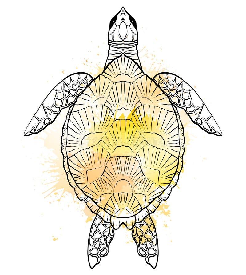 乌龟的等高黑白例证与黄色水彩的飞溅 对象是分别于背景 皇族释放例证