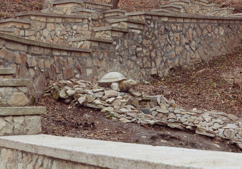 乌龟石雕塑在石河的在公园在秋天 免版税库存照片