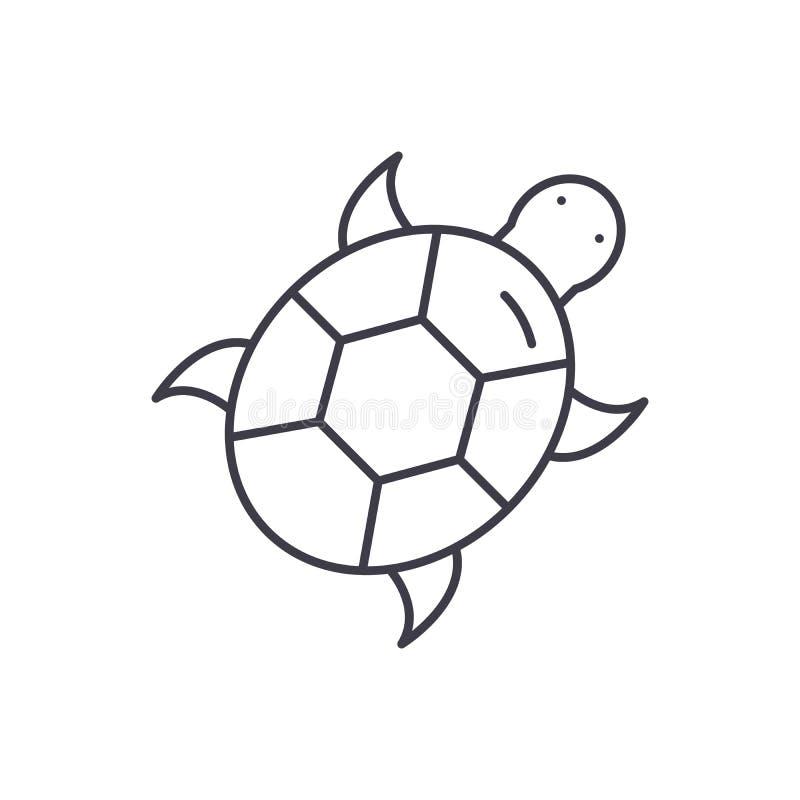 乌龟线象概念 乌龟传染媒介线性例证,标志,标志 皇族释放例证