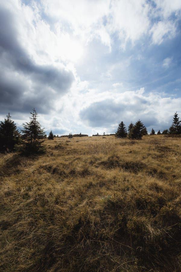 乏味的自然在山顶部 免版税库存图片