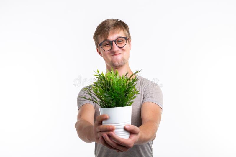 乐趣、笑话、书呆子和怪杰概念-拿着在一个罐的滑稽的人一朵花在白色背景 库存图片