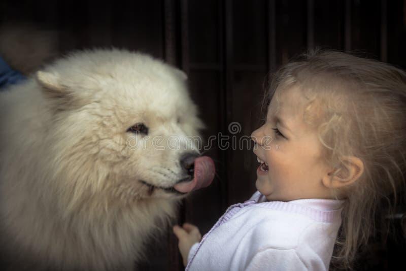 乐趣孩子儿童亲切的小狗家畜关心概念动物爱关心友谊仁慈 免版税库存照片