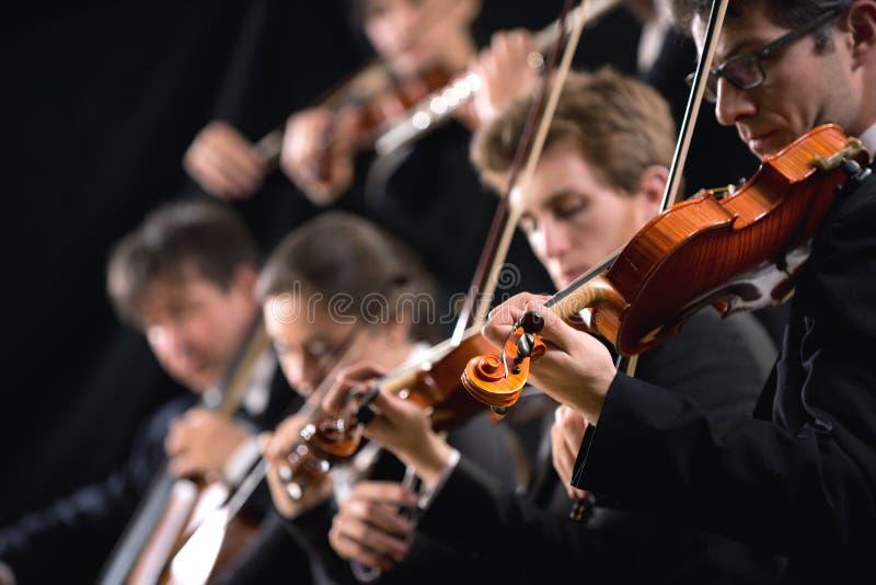 乐队第一个小提琴乐器组 图库摄影