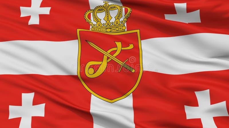 乔治亚主要军事旗子特写镜头视图 皇族释放例证