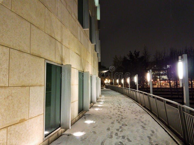 乔治亚在雪风暴期间的技术大厦 免版税图库摄影