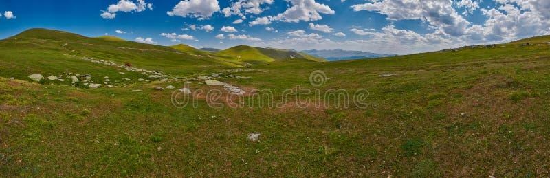 乔治亚高在山风景全景 免版税库存图片