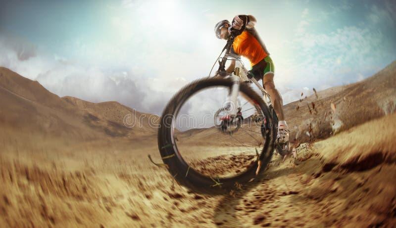 乘坐单磁道的登山车骑自行车者 免版税图库摄影