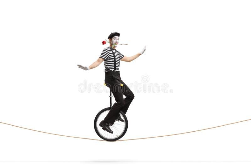 乘坐单轮脚踏车在绳索和拿着在他的嘴的笑剧一朵玫瑰 库存照片