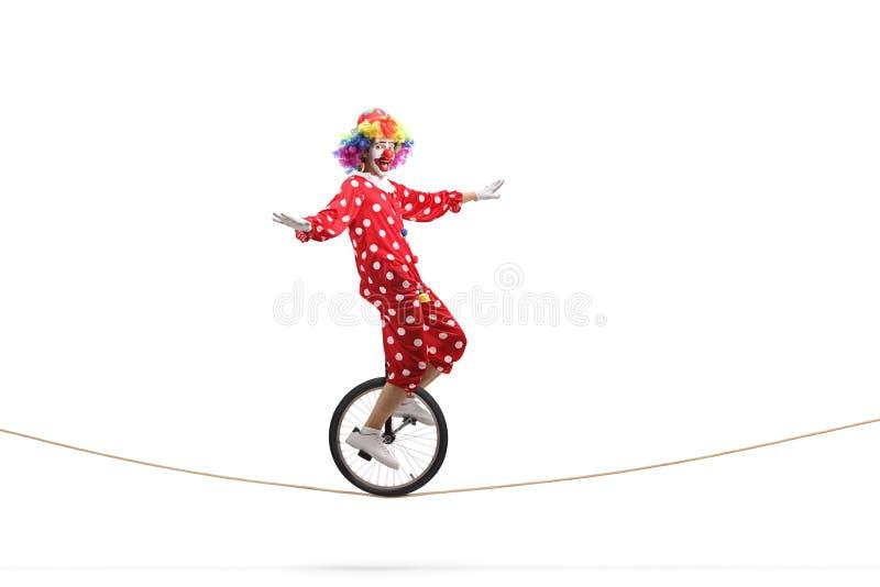 乘坐单轮脚踏车的Cown在绳索 免版税库存图片