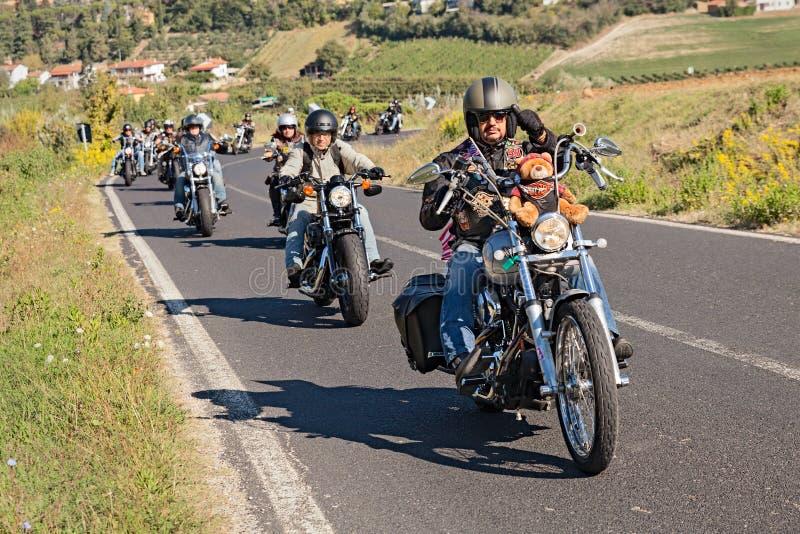 乘坐哈利戴维森的一个小组骑自行车的人 库存图片