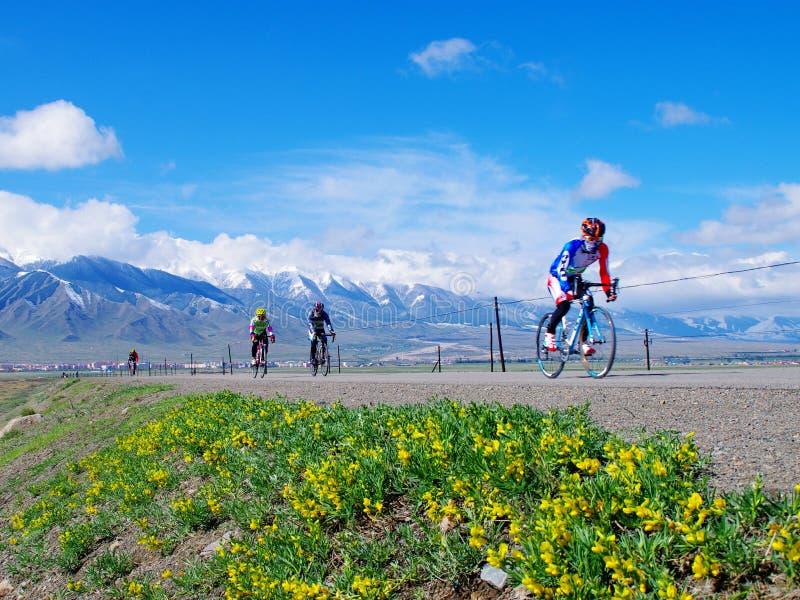 乘坐在新疆天山草原 免版税图库摄影