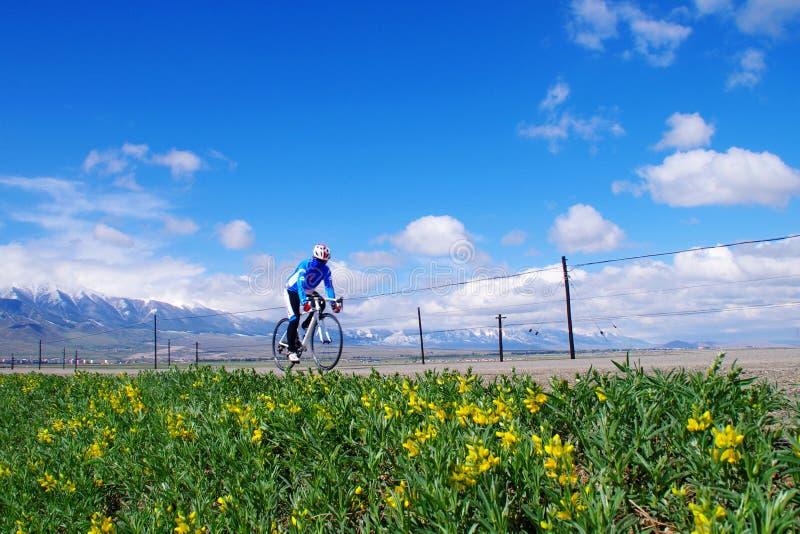 乘坐在新疆天山草原 库存图片