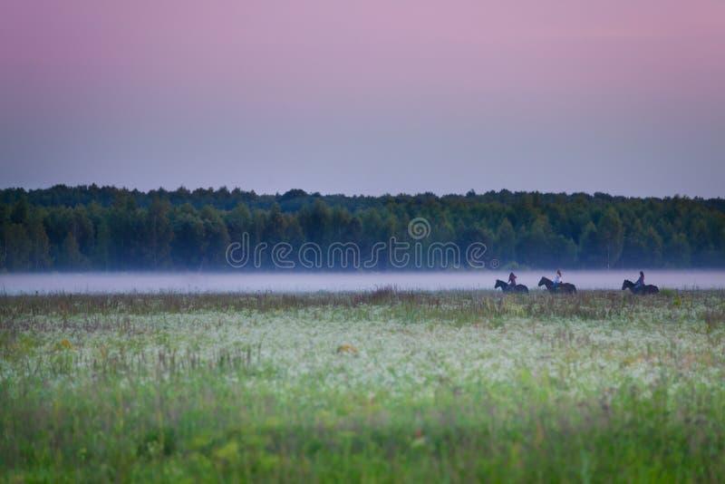 乘坐在雾的三名骑马者美丽的景色  库存照片