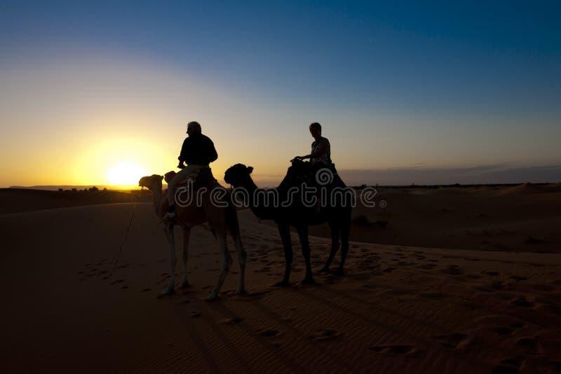 乘坐在骆驼的妇女和人在日落在撒哈拉大沙漠,摩洛哥 免版税库存图片