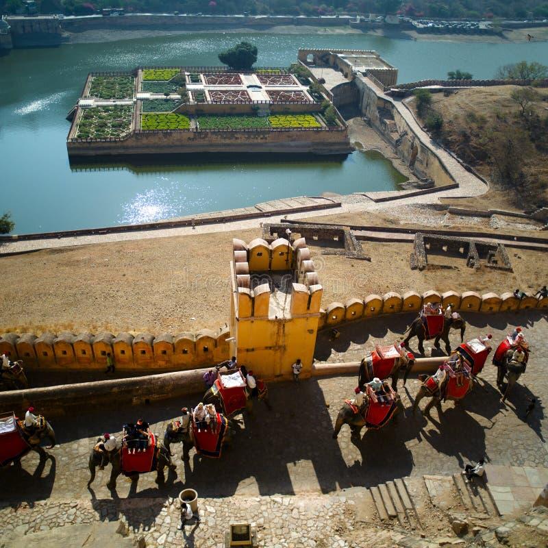 乘坐大象的游人对琥珀色的堡垒 库存图片