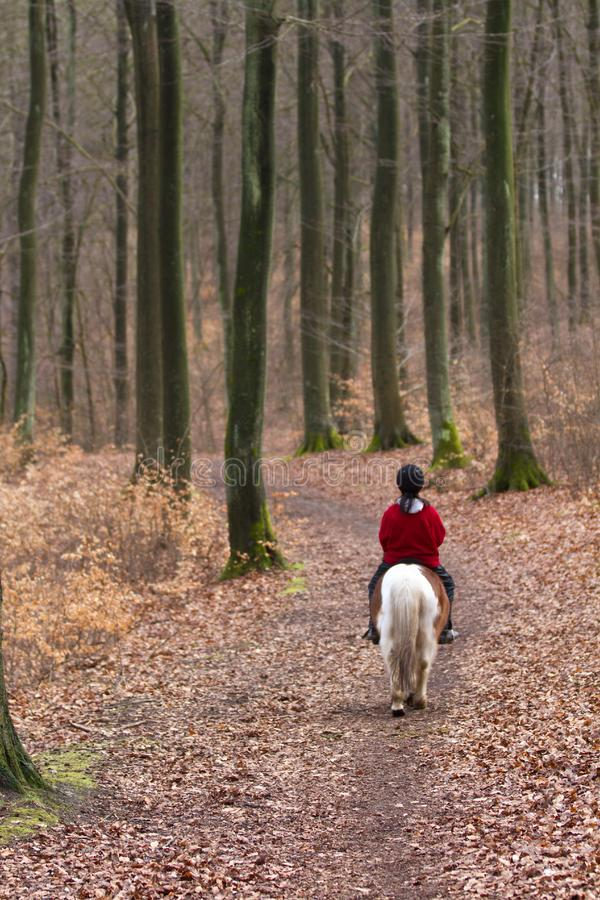 乘坐小马的女孩 免版税库存照片
