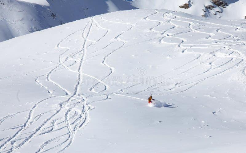 乘坐新鲜的粉末的Backcountry挡雪板 库存照片