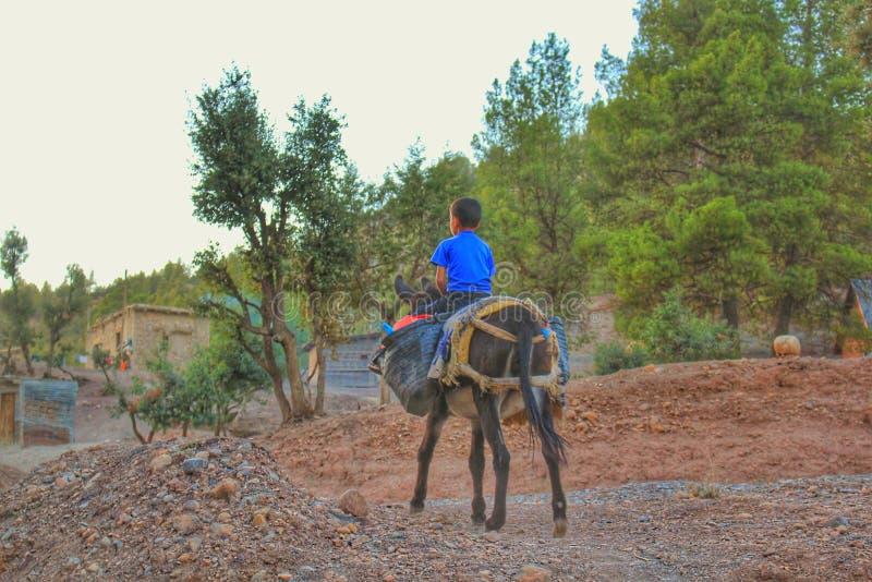 乘坐驴的村庄男孩 图库摄影