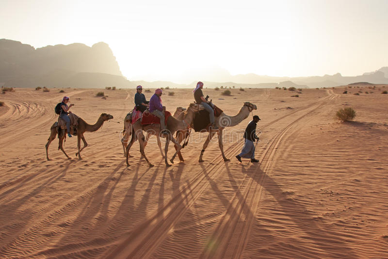乘坐骆驼的游人在日落在瓦地伦沙漠,约旦 库存照片