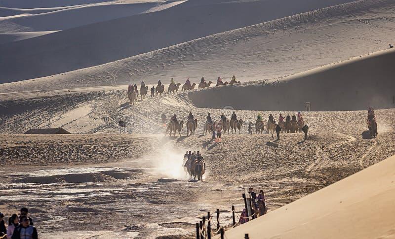 乘坐骆驼的游人在Mingsha山 库存图片