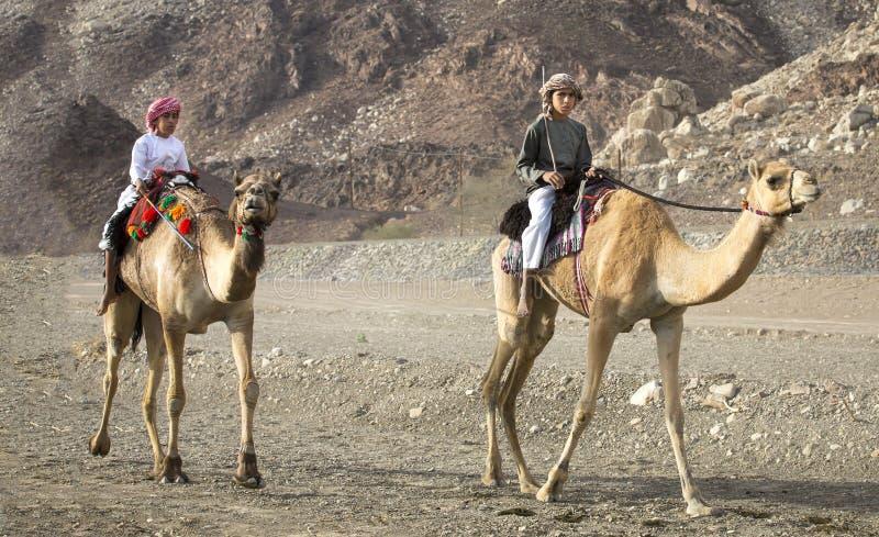乘坐骆驼的阿曼孩子在一条多灰尘的乡下路 库存照片