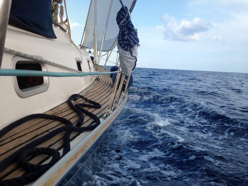 乘快艇在海的航行,侧视图,波浪,流动股票 免版税库存照片