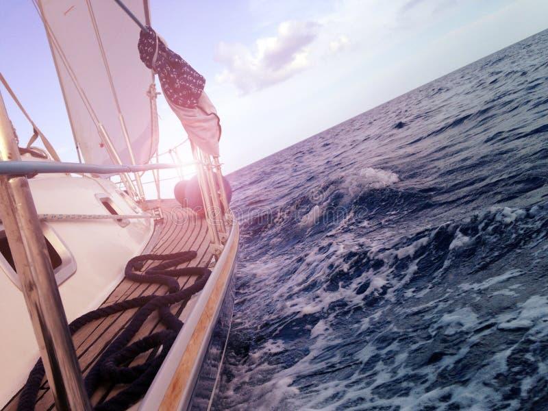 乘快艇在海的航行,侧视图,波浪,流动股票 免版税库存图片