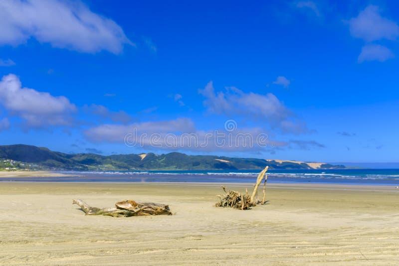 九十个英里海滩在新西兰 库存照片