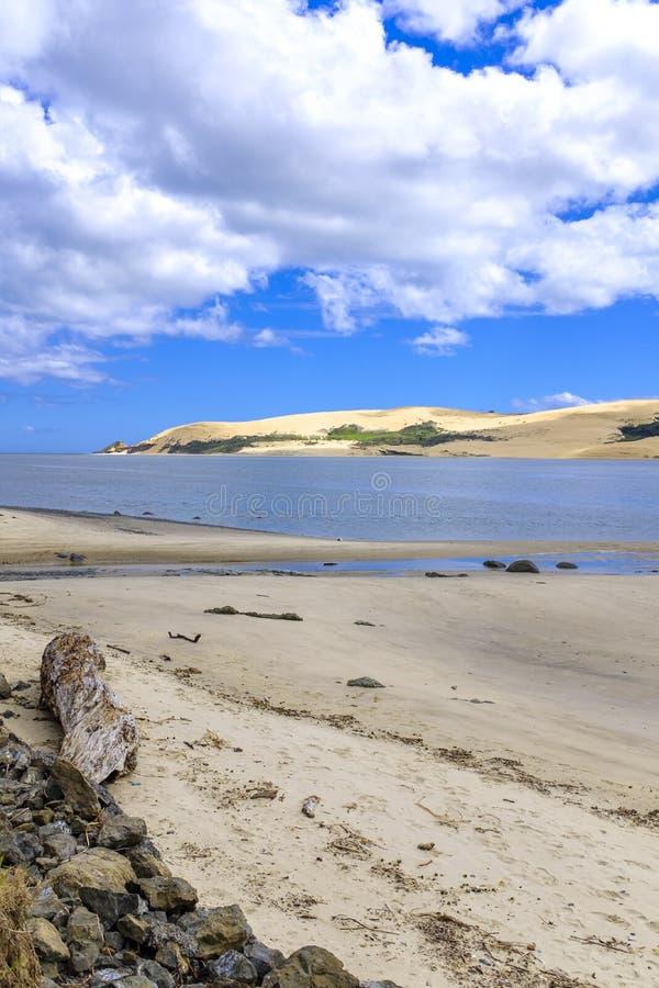 九十个英里海滩在新西兰 免版税图库摄影