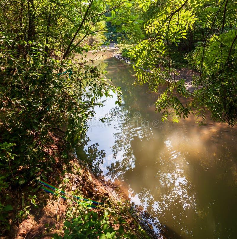 九英里奔跑,一条小河在弗利克公园,匹兹堡,宾夕法尼亚,美国 库存照片
