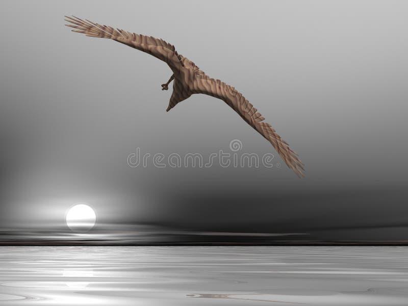 也是棕色老鹰 免版税库存照片