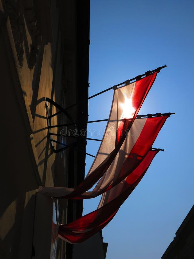 维也纳旗子  免版税库存图片