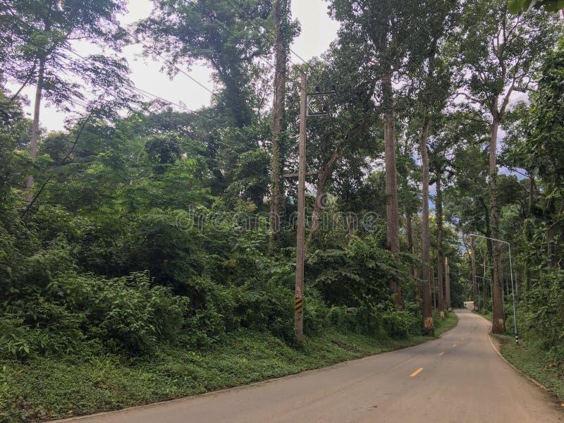 乡下公路和旅途方式去在山的自然 免版税库存图片