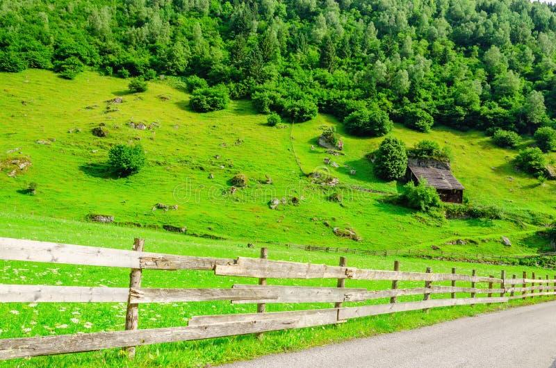 乡下公路和绿色高山草甸,奥地利 免版税库存照片