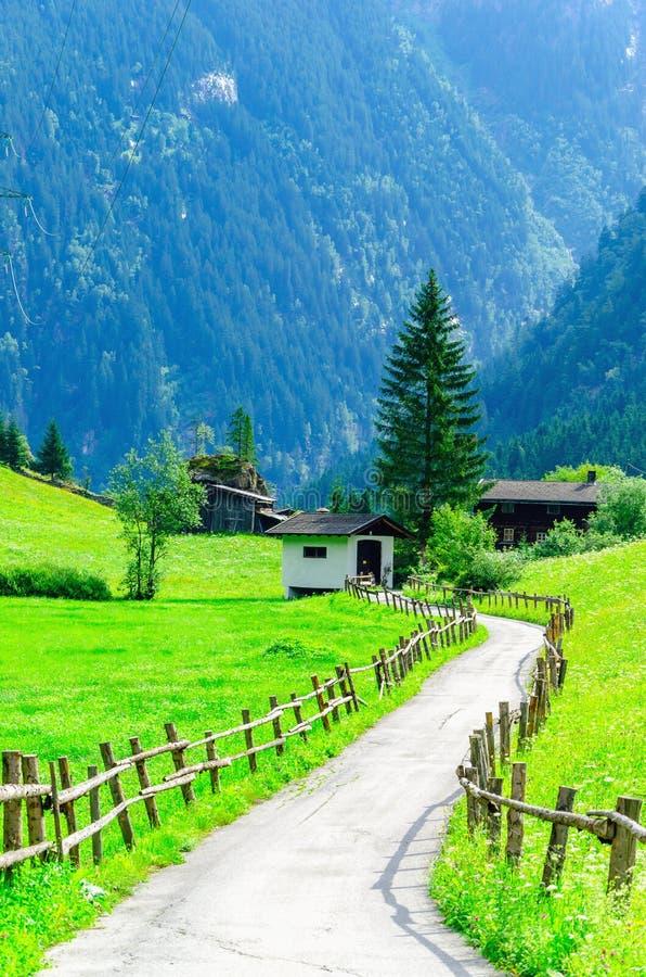 乡下公路和绿色高山草甸,奥地利 免版税库存图片
