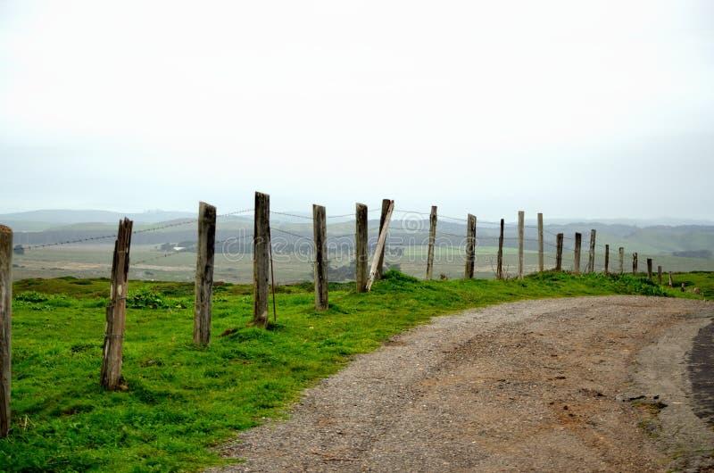 乡下公路在加利福尼亚 库存图片