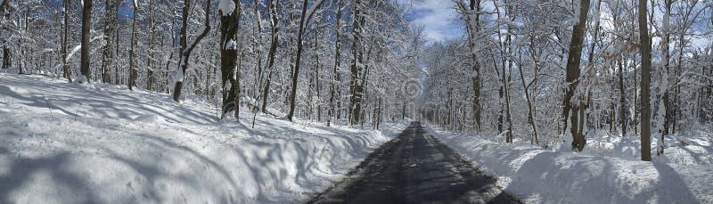 乡下公路在有积雪的树和天空蔚蓝的马里兰 免版税库存照片