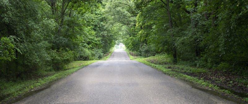 乡下公路横幅,全景,全景,背景 库存图片