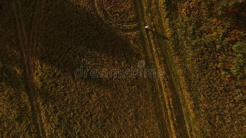 乡下公路的鸟瞰图有轮胎轨道的在树中 r 日落领域顶视图与人得到的 免版税库存图片