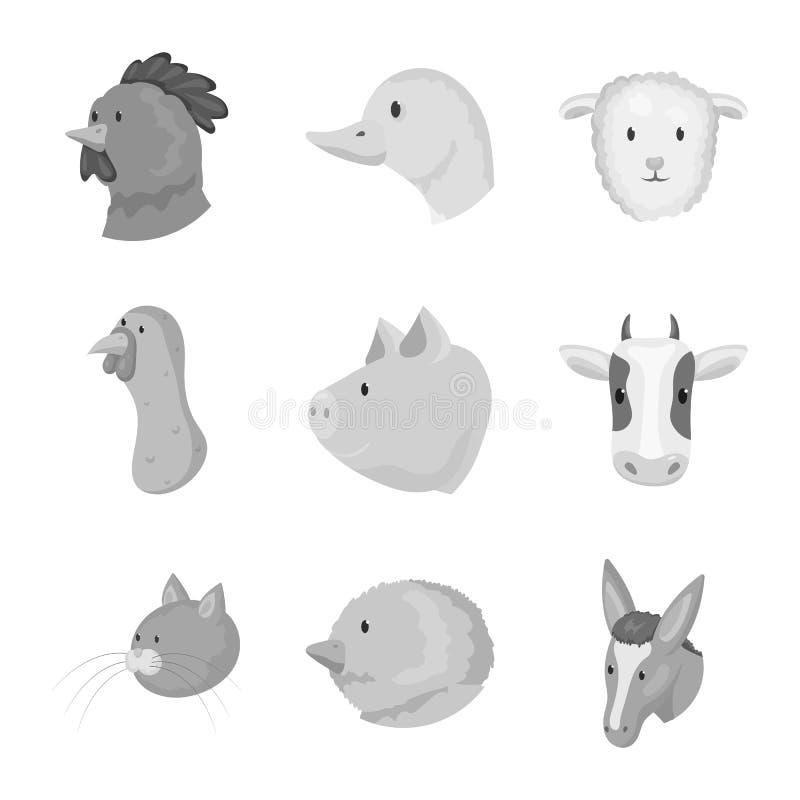 乡下和宅基商标传染媒介设计  乡下和良种畜标志的汇集网的 库存例证