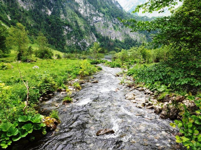 乡下在有一点河的巴伐利亚 免版税图库摄影