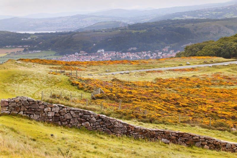 乡下威尔士 库存照片